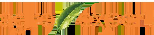 Agroexpert sigla