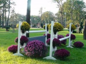 Ansamblu flori - Parcul Tineretului din Craiova
